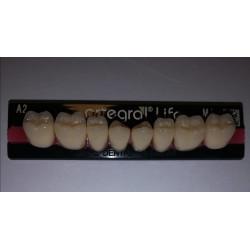 Artegral Life zęby boczne...
