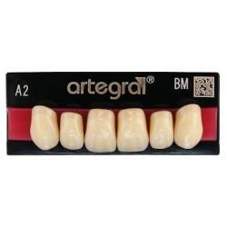 Artegral zęby przednie górne