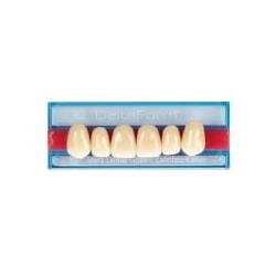 DeltaForm zęby przednie górne