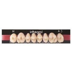 Integral zęby boczne górne