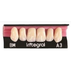 Integral zęby przednie górne